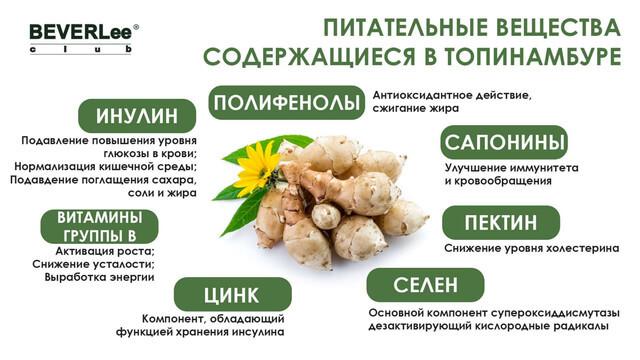 Питательные вещества содержащиеся в топинамбуре